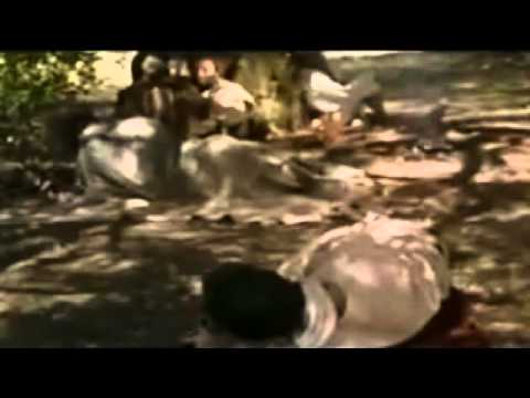 Mateo 24 - Jesus anuncia el fin del mundo