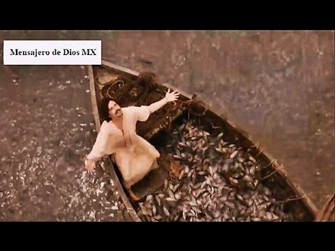 Photo of Jesus y la Pesca Maravillosa | Los Milagros de Jesus #1