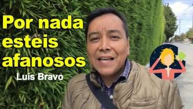Photo of Por nada estéis afanosos – Luis Bravo